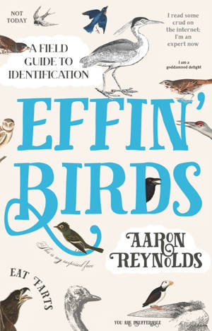 ShortBookandScribes #BookReview – Effin' Birds by Aaron Reynolds @unbounders #RandomThingsTours #BlogTour