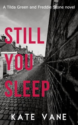 ShortBookandScribes #GuestPost about Starting a Series by Kate Vane, Author of Still You Sleep @k8vane