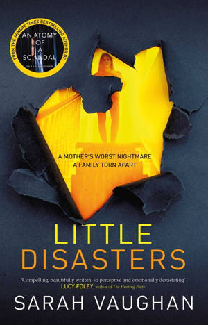 ShortBookandScribes #BookReview – Little Disasters by Sarah Vaughan