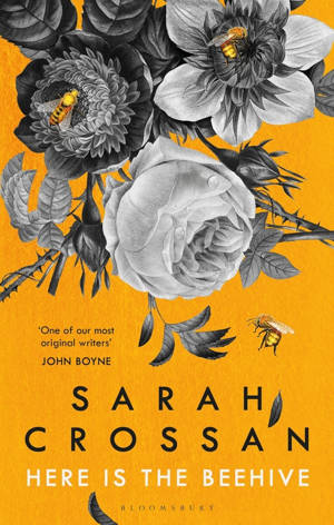 ShortBookandScribes #BookReview – Here is the Beehive by Sarah Crossan